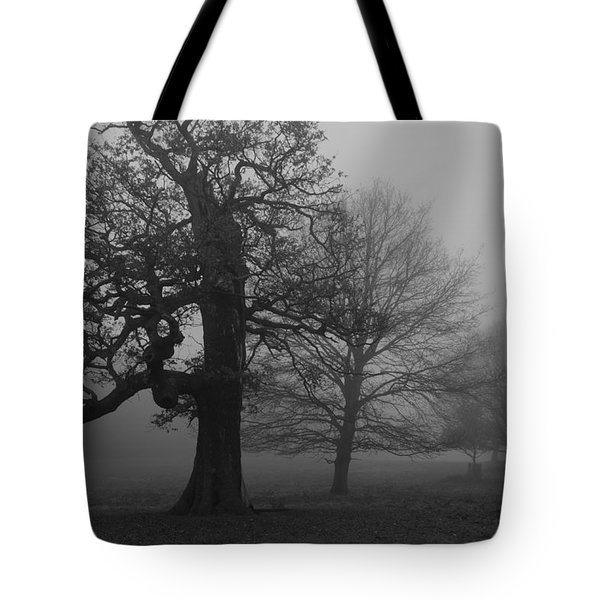 Tote Bag featuring the photograph Gradual Trees by Maj Seda