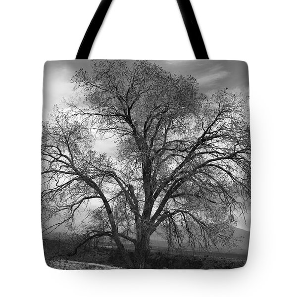 Grand Canyon Life Tree Tote Bag