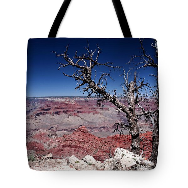 Tote Bag featuring the photograph Grand Canyon Number One by Lon Casler Bixby