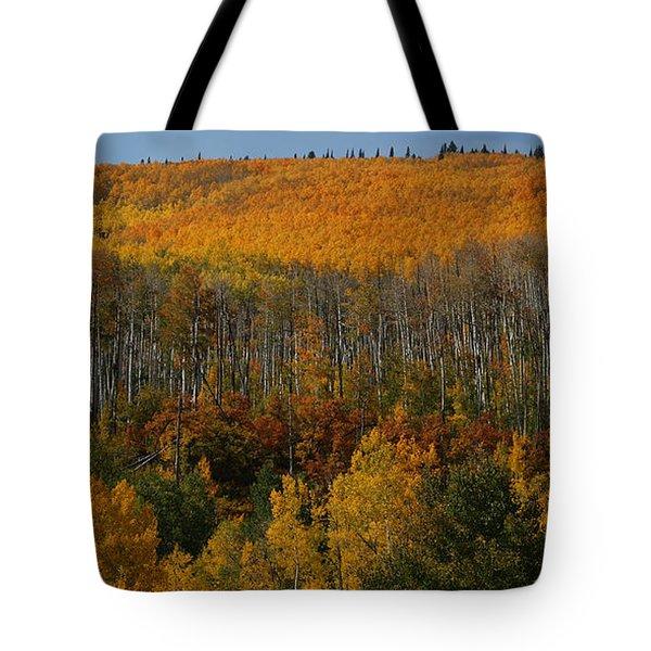 Grand Mesa Colors Tote Bag