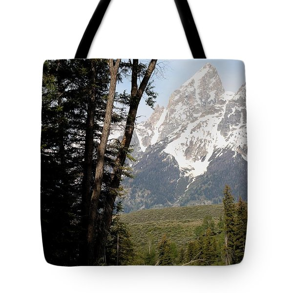 Grand Tetons Vertical Tote Bag by Living Color Photography Lorraine Lynch