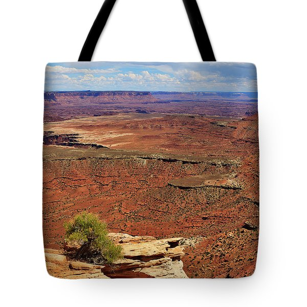Grand View Point Overlook In Canyonlands National Park Tote Bag