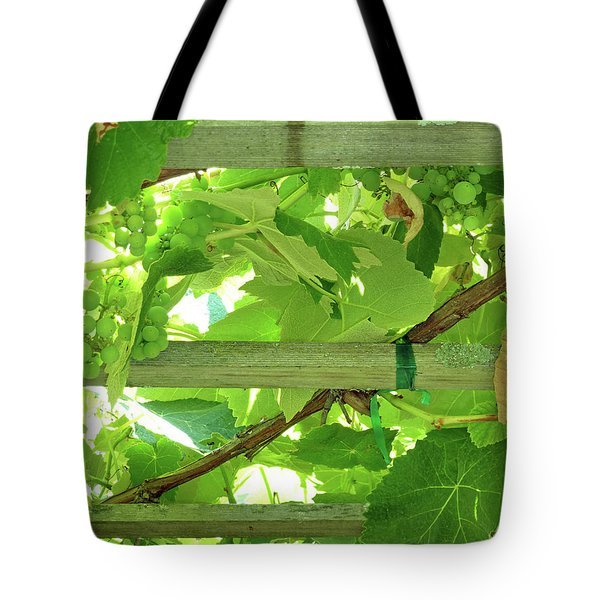 Grape Arbor Tote Bag by Methune Hively