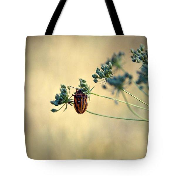 Graphosoma Lineatum Tote Bag by Stelios Kleanthous