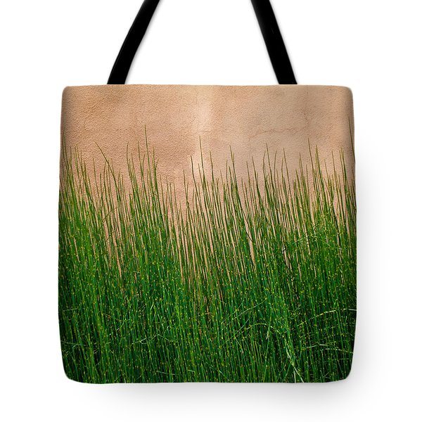 Tote Bag featuring the photograph Grass And Stucco by David Pantuso