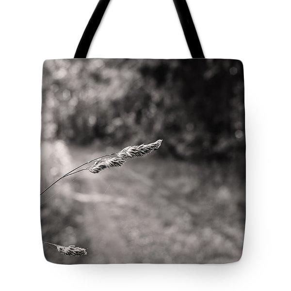 Grass Over Dirt Road Tote Bag