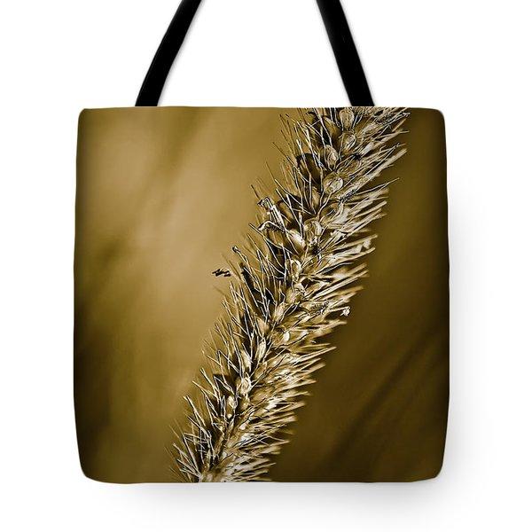Grass Seedhead Tote Bag by  Onyonet  Photo Studios