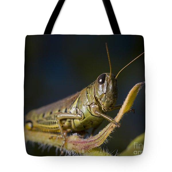 Grasshopper Tote Bag by Art Whitton