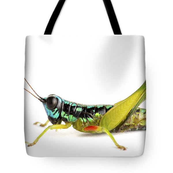 Grasshopper Barbilla Np Costa Rica Tote Bag by Piotr Naskrecki