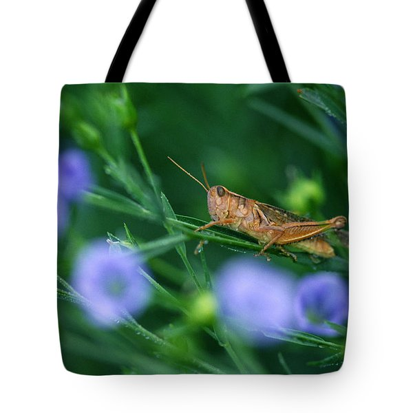 Grasshopper Tote Bag by Mike Grandmailson