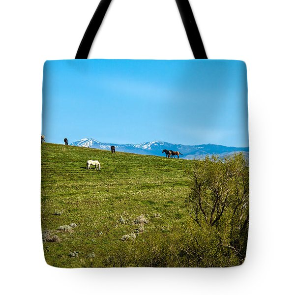 Grazing Horses Tote Bag by Robert Bales