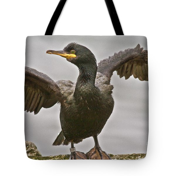Great Black Cormorant Tote Bag by Heiko Koehrer-Wagner