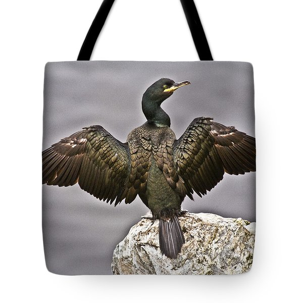 Great Black Cormorant II Tote Bag by Heiko Koehrer-Wagner