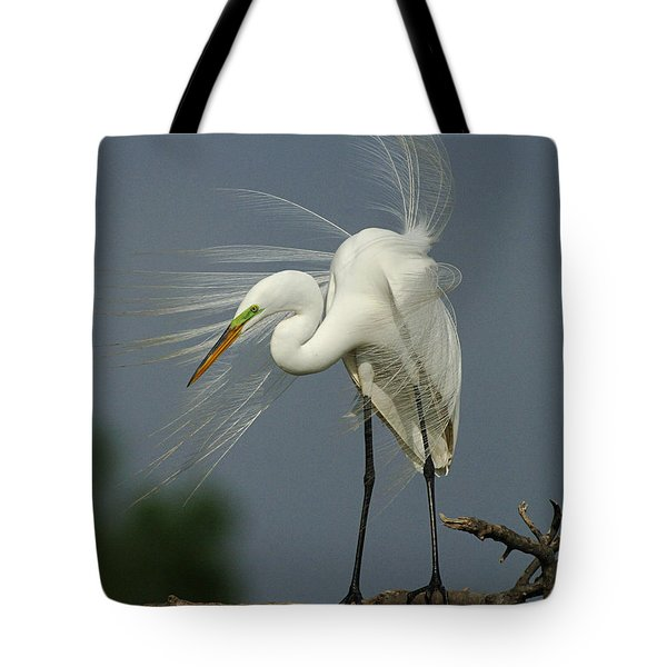 Great Egret Tote Bag by Bob Christopher
