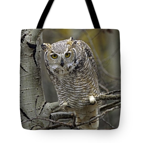 Great Horned Owl Pale Form Kootenays Tote Bag by Tim Fitzharris