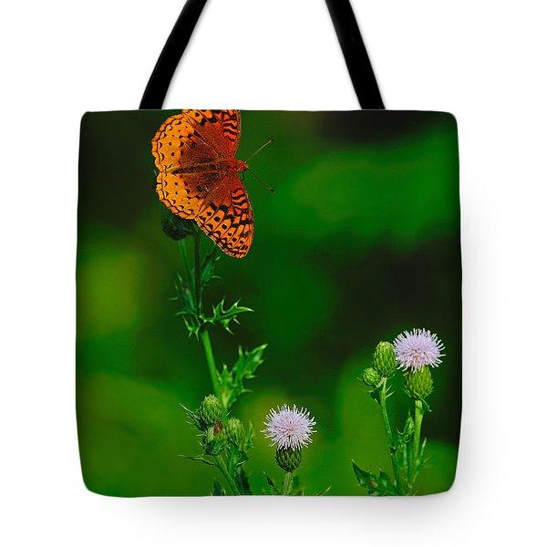 Great Spangled Fritillary Tote Bag