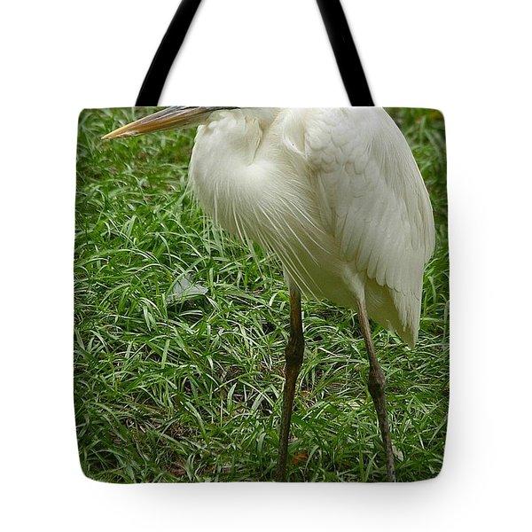 Great White Heron Tote Bag by Myrna Bradshaw