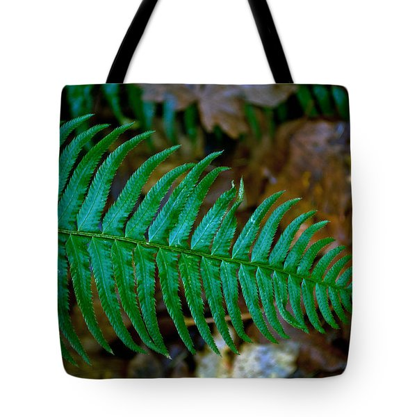 Tote Bag featuring the photograph Green Fern by Tikvah's Hope