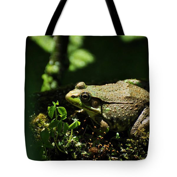 Green Frog Rana Clamitans Tote Bag