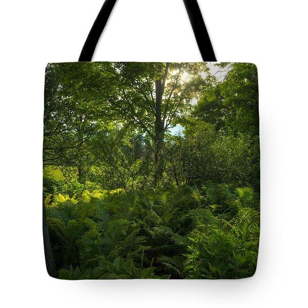 Green Light Tote Bag by Steve Gadomski