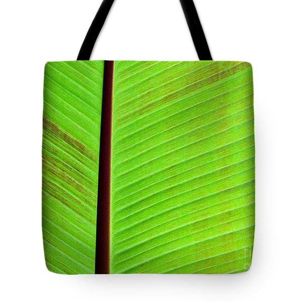 Green Lines Tote Bag by Sabrina L Ryan