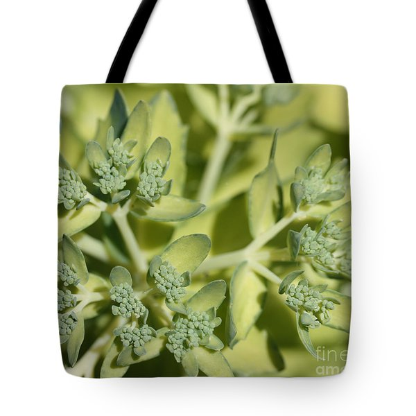 Green On Green Tote Bag by James E Weaver