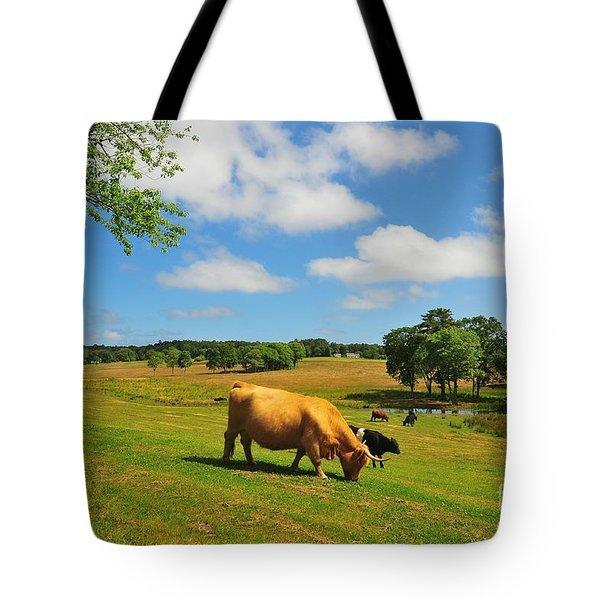 Green Pasture Tote Bag by Catherine Reusch Daley