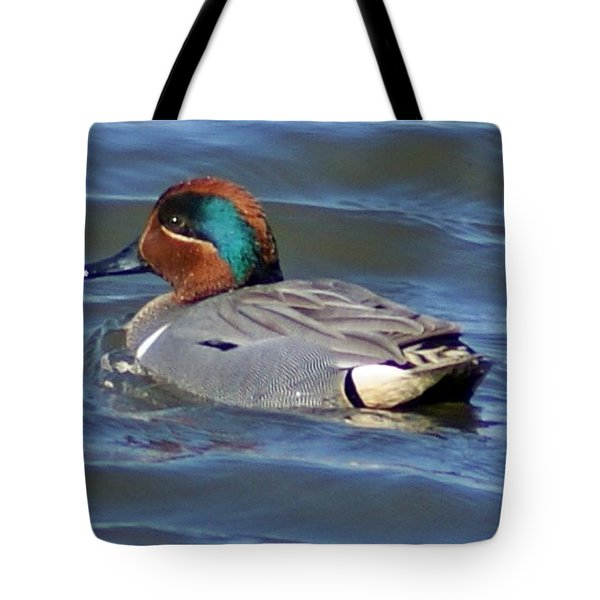 Green Winged Teal Tote Bag by Joe Faherty