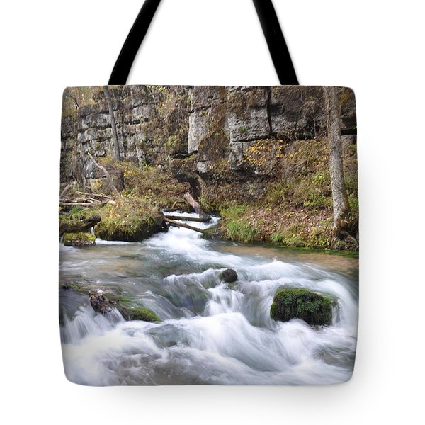 Greer Spring Fall 1 Tote Bag by Marty Koch