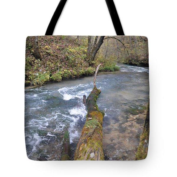 Greer Spring Fall 2 Tote Bag by Marty Koch