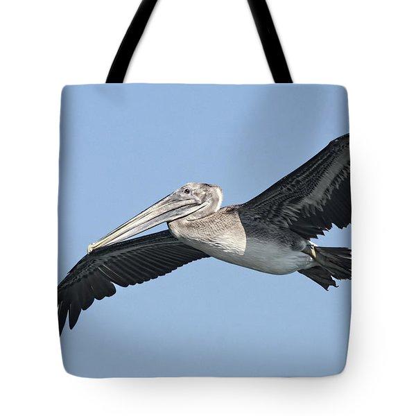 Grey Pelican Tote Bag by Deborah Benoit