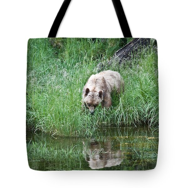 Grizzly Bear And Reflection On Prince Rupert Island Canada 2209 Tote Bag