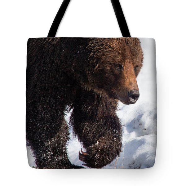Tote Bag featuring the photograph Grizzly On Snow by J L Woody Wooden