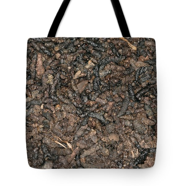 Guano Tote Bag by Ted Kinsman