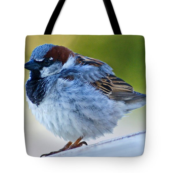 Guard Bird Tote Bag by Colleen Coccia