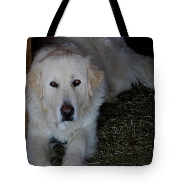 Guarding The Barn Tote Bag