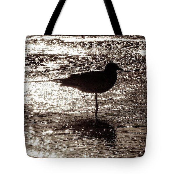 Tote Bag featuring the photograph Gull In Silver Tidal Pool by Jim Moore