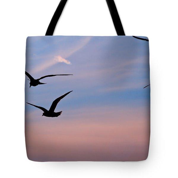 Gulls At Dusk Tote Bag by Karol Livote