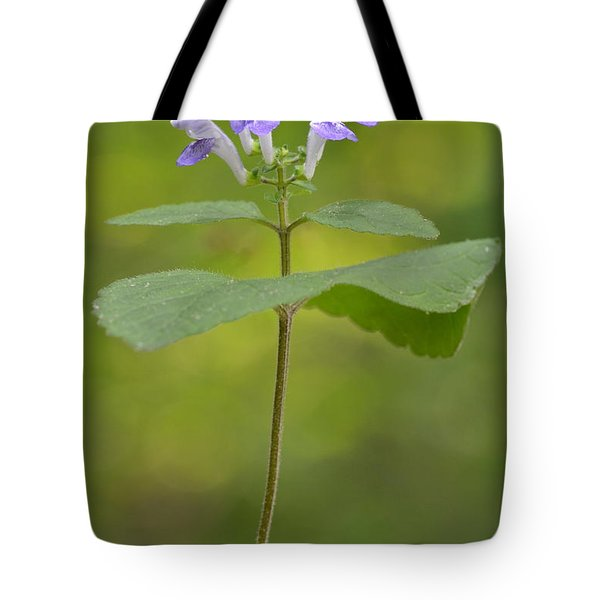 Hairy Skullcap II Tote Bag