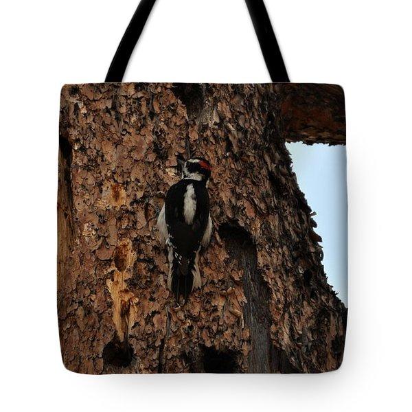 Hairy Woodpecker On Pine Tree Tote Bag