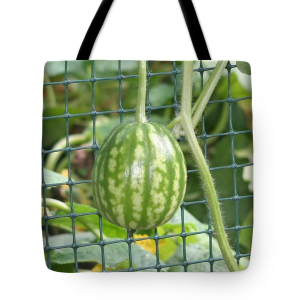 Hanging Watermelon Plant Tote Bag by Barbara S Nickerson