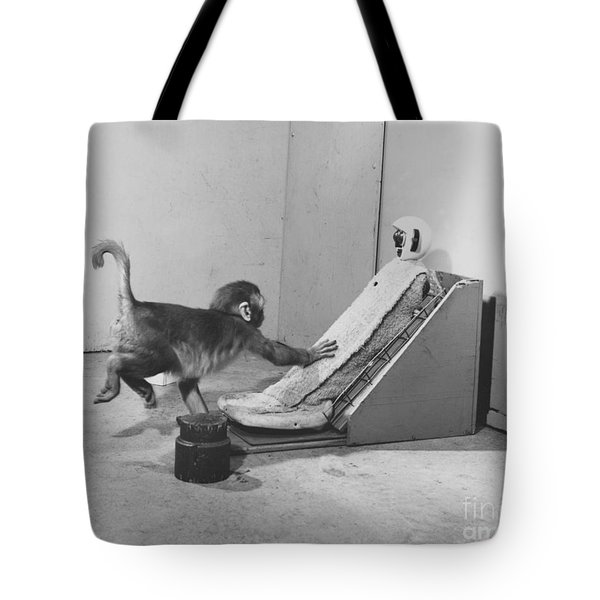 Harlow Monkey Experiment Tote Bag by Science Source