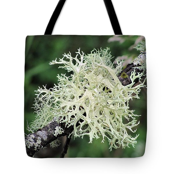 Tote Bag featuring the photograph Harmony by I'ina Van Lawick