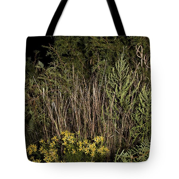 Harvest Moon Over Texas Plains Tote Bag by Melany Sarafis