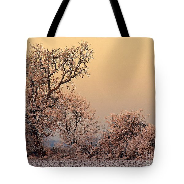 Frost 2 Tote Bag by Linsey Williams