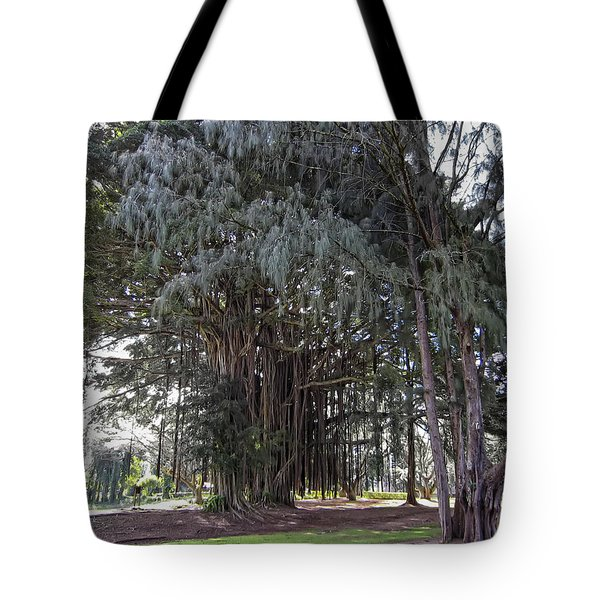 Hawaiian Banyan Tree Tote Bag by Daniel Hagerman