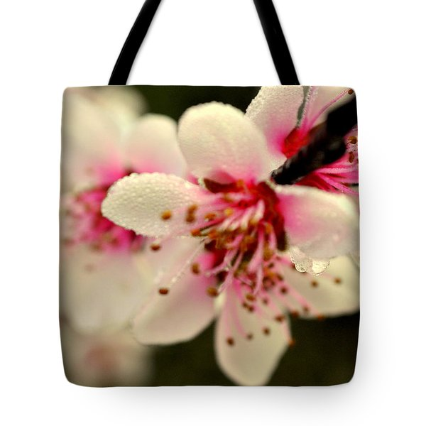 Hawthorn  Tote Bag by Marty Koch