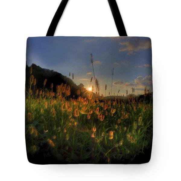 Hay Field Tote Bag by Dan Friend