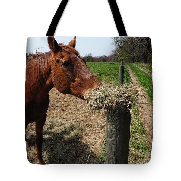 Hay Is For Horses Tote Bag by Bill Cannon