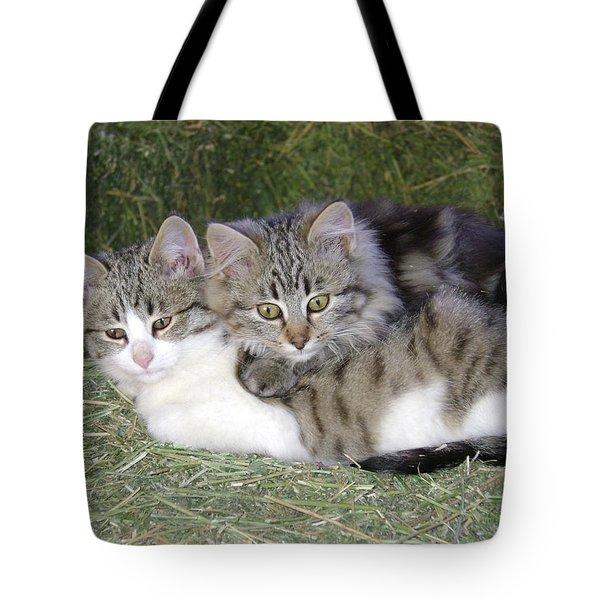 Haystack Buddies Tote Bag
